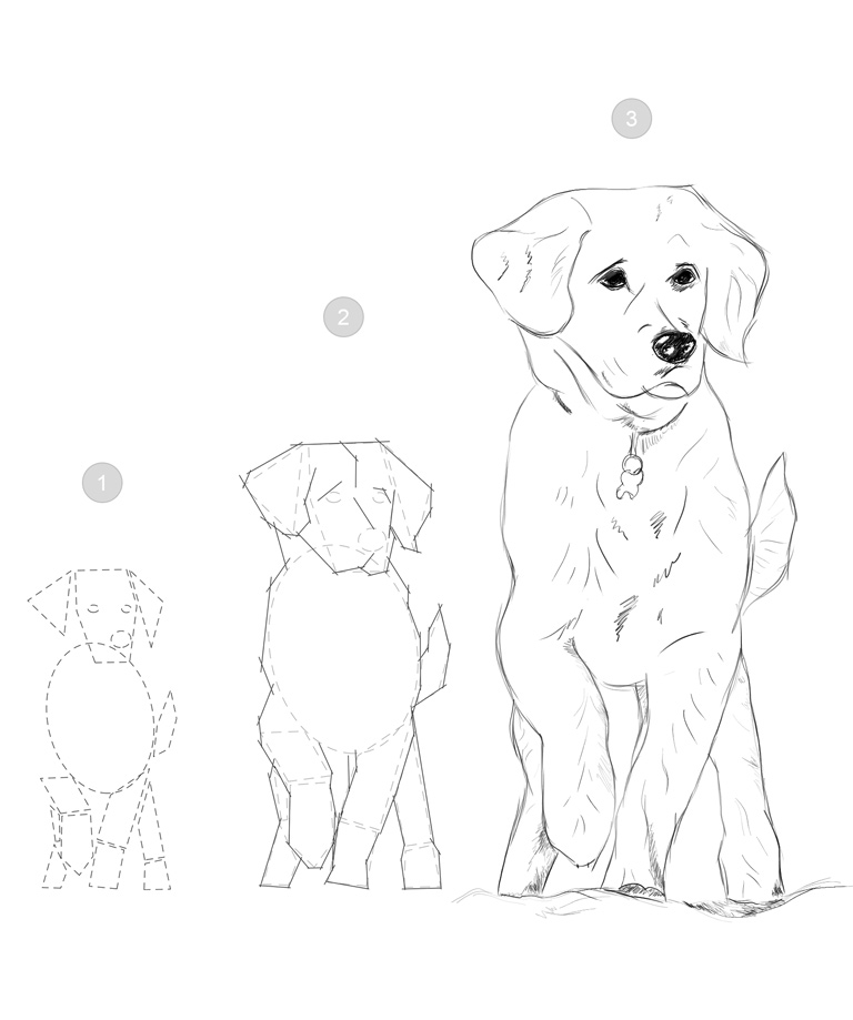 Download Basic Drawing Skills Workbook