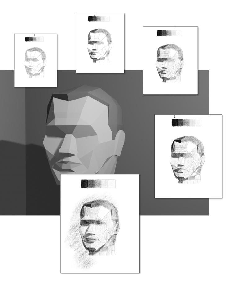 portrait drawing shading exercise