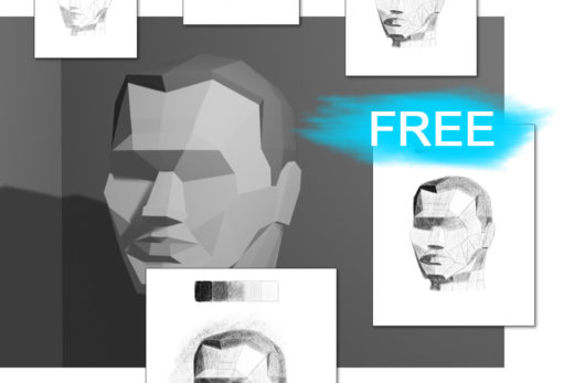 Download portrait drawing shading exercise