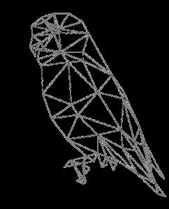 Bird - Low Poly Mesh